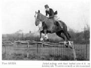 Horse and rider jumping spiked palings/barbed wire