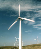 Picture of wind farm